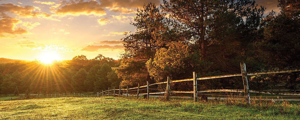grassy field with wood fence and sunrise